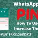 WhatsApp Pin | Pinned Chats In WhatsApp